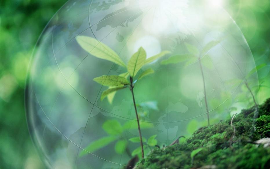 Порошок без химии бережет природу